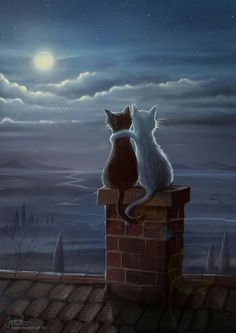 Enjoying the evening, black and white cat painting, enjoying the moon on the roof top. that would be my cats! Esta imágen me recordó a Luna y Artemis de Sailor Moon. Jeremiah Morelli — Just Two Cats on a Roof, 2014 Just two cats on a roof Something qu I Love Cats, Crazy Cats, Cute Cats, Animals And Pets, Cute Animals, Anime Animals, What Cat, Photo Chat, Moon Art