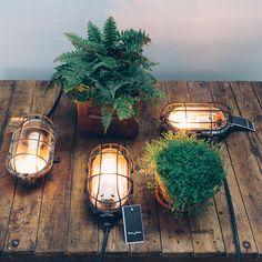 New turtle lamps in store.  #blomandblom #lighting #lamps #amsterdam #interiordesign #industrial #interior #design