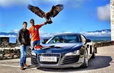 Patenschaften - Adlerarena Burg Landskron Vehicles, Golden Eagle, Red Kite, Alexander The Great, Wildlife Conservation, Lift Off, Kinds Of Birds, Owls, Car