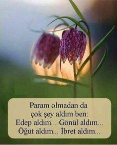 Turkish Language, Erdem, Baby Knitting Patterns, Cool Words, Allah, Quotations, Inspirational Quotes, Deen, Crafts