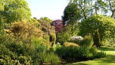 Cruickshank Botanic Gardens - Scotland's Gardens