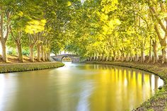 The Canal du Midi in southern France is often portrayed as Europe's most beautiful waterway, and a unique symbol of harmony between Man and nature. Now, however, it is the source of Europe Destinations, Holiday Destinations, Canal Du Midi, Holidays Around The World, Visit France, Canal Boat, Narrowboat, France Travel, The World's Greatest