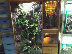 Complete instructable on converting clothes cabinet into multiple vivarium