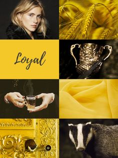 Helga Hufflepuff, one of the four founders of Hogwarts Harry Potter Pictures, Harry Potter Facts, Harry Potter Books, Harry Potter Love, Harry Potter Universal, Harry Potter World, Hogwarts Founders, Gellert Grindelwald, Hufflepuff Pride
