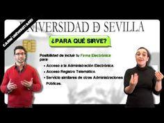 Ventajas, promociones y tramitación del carné universitario - Universidad de Sevilla