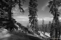 Buck Rock Fire Lookout Photo by Ivete Basso Photography -- National Geographic Your Shot