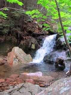 Gorge Waterfall. Acadia National Park, Maine