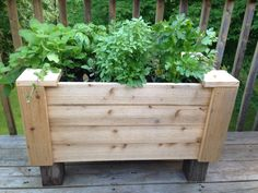 My herb planter made for me by Bob! Oh I love that man!!!!!