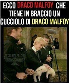 Harry Potter Quiz, Harry Draco, Harry Potter Tumblr, Harry Potter Anime, Harry Potter World, Harry Potter Hogwarts, Draco Malfoy, Humor, Memes