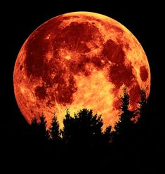 Tonight's full moon ( the mourning moon ) will be the largest / closest full moon in our lifetime…… See you on the other side :)