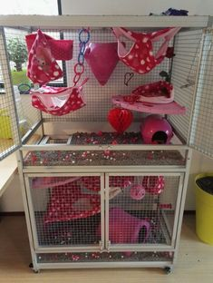 Don't neglect to switch slowly in case you decide to alter the food on your pet. Rat Cage Diy, Pet Rat Cages, Ferret Toys, Pet Ferret, Chinchilla Cage, Ferret Cage, Cute Ferrets, Cute Rats, Sugar Glider Cage