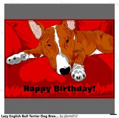 Bull Terrier Happy Birthday Day