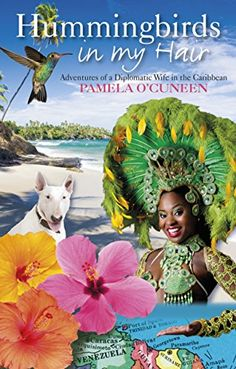 Hummingbirds in My Hair: Adventures of a Diplomatic Wife in the Caribbean by [O'Cuneen, Pamela]