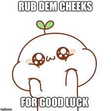 Good Luck In Your New School Love You Bunches Xxxxxxxxxxxxoooooooooooo Luck Good Luck Memes