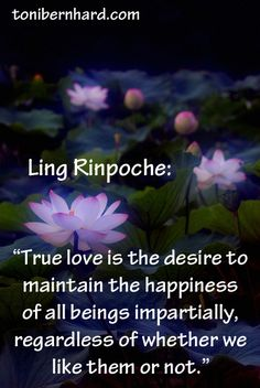"""True love is the desire to maintain the happiness of all beings impartially, regardless of whether we like them or not."""