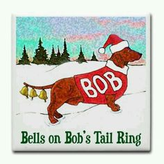 Tails Ringing Merry Christmas, Christmas Jokes, All Things Christmas, Christmas Time, Christmas Comics, Christmas Wishes, Funny Christmas Quotes, Xmas Jokes, Halloween Jokes