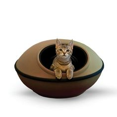 The K&H Pet Products Thermo Mod Dream Pod zips together in minutes to give your pet a snuggly place to chill. This unusually shaped modern pod. Heated Cat Bed, How To Clean Pillows, Bed Pads, Unique Cats, Online Pet Supplies, Dog Supplies, Pet Beds, Your Pet, Kitty
