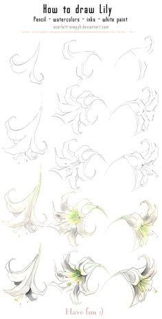 Imagini pentru a drawing step by step