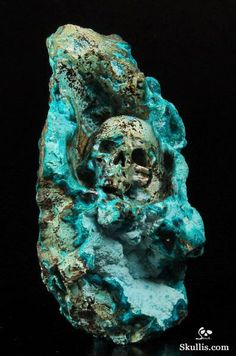 mineralists: Carved Skull Chrysocolla Specimen • The Bird is The Word Bird Skull, Skull Art, Carved Skulls, Rock Box, Types Of Stones, Crystal Skull, Rocks And Gems, Skull And Bones, Stone Carving