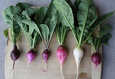 Such wonderful varieties of delicious radishes.