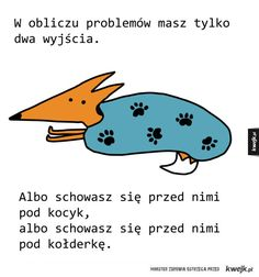 Jak sobie radzić z problemami Funny Animals, Cute Animals, Wombat, Positive Mind, Poetry Quotes, Just Love, Funny Pictures, Jokes, Positivity