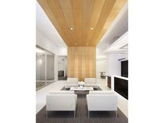 Waiting area, natural treatment on wall/ceiling to cozy up otherwise modern finishes