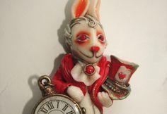 Albino rabbit