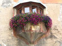 window engadin ©moniek spaans