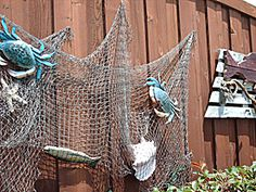 1000 ideas about fishing net decor on pinterest for Fish net decoration ideas