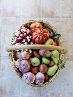 Basket Of Vegetables ~