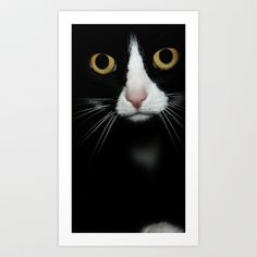 cat Art Print by ingz - $18.00 #ingz #society6 #canvas #decor #print #homedecor #cat #adorable #pet #portrait