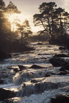 These beautiful Falls of Dochart run through the small town of Killin in Loch Lomond & The Trossachs National Park. The park is full of waterfalls, lochs and mountains (21 Munros and 19 Corbetts to be precise!)
