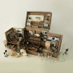 Cabinet of Curiosities (standard) 3 Objet Harry Potter, Campaign Furniture, Apothecary Cabinet, Cabinet Of Curiosities, Assemblage Art, Larp, Tool Box, Diy And Crafts, Projects To Try