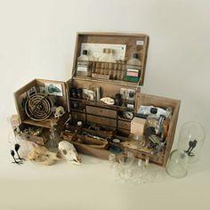 petites-curiosites_cabinet_de_curiosite_ m_shopb.jpg