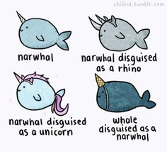 narwhals in disguises plus a whale drawing from chibird