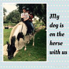 Percy my dog is on the horse with us