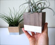 Add a COLOR POP of PAINT to Your Plant Holder by thewoodybeckers, $3.00