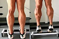 Gastrocnemius & Soleus Muscles: Stretch and Strengthen | Equinox Health Clinic | Victoria, BC