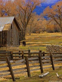 The country life with an old barn and fence. Love that country living. Country Barns, Country Life, Country Roads, Country Living, Country Picnic, Country Charm, Farm Barn, Old Farm, Farm Fence