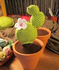 Crochet Patterns Amigurumi, Amigurumi Doll, Amigurumi Tutorial, Cacti And Succulents, Cactus Plants, Crochet Cactus, Pin Cushions, Pet Toys, Free Crochet