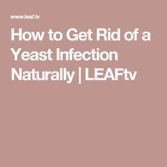 die besten 25 yeast infection in mouth ideen auf pinterest candida albicans apfelessig und. Black Bedroom Furniture Sets. Home Design Ideas
