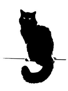 Black Cat Illustration . . .                                                                                                                                                      More