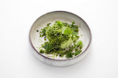 Sorrel Ice-Cream with Cucumber and Spruce Shoots- By Chef Anton Bjuhr