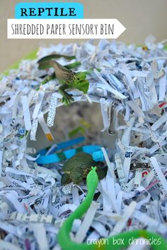 R is for Reptile Shredded Paper Sensory Bin by Crayon Box Chronicles (31 Days of ABCs Series)