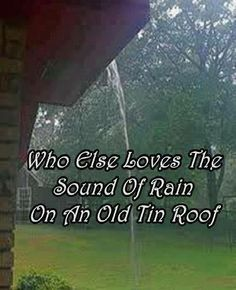 Who else loves the sound of rain on an old tin roof? (Always need a metal roof somewhere on the homestead, even if it's just over the chicken coop. Sound Of Rain, Singing In The Rain, Rain Sounds, Thats The Way, That Way, Country Life, Country Girls, Country Living, Country Quotes