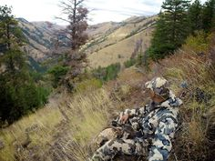 There's no doubt about it: elk hunting is more difficult than it used to be for even some of the most experienced hunters. They are facing more population pressures in recent years for many reasons. The reintroduction of natural predators … Continued Bow Hunting Tips, Big Game Hunting, Mule Deer Hunting, Creature Of Habit, Indian River, Hunting Rifles, Predator, Hunters, Habitats