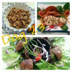 28 Dae Dieet, Dieet Plan, 28 Days, Fat Burner, Diabetes, Meal Planning, Healthy Recipes, Change, Diet