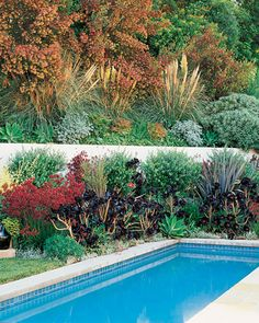 Hillside gardening tips