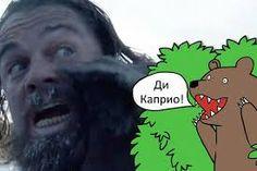 Image result for медведь мем