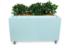 How to make a portable planter box - Better Homes and Gardens - Yahoo!7